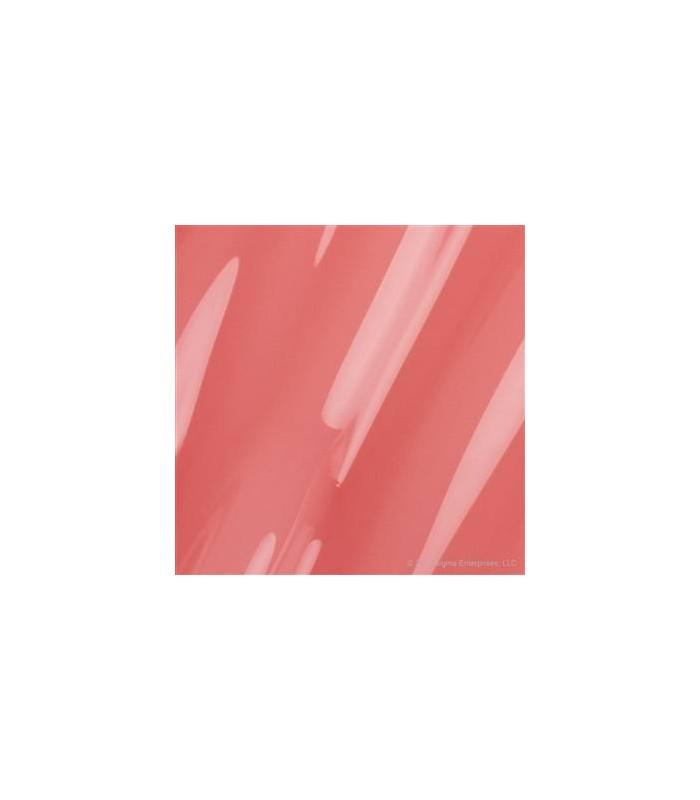 LIP GLOSS - HINT SIGMA BEAUTY